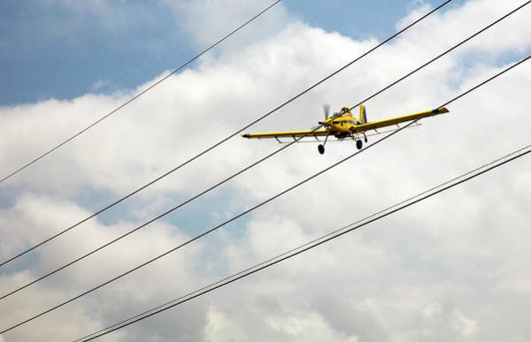 Crop Duster And Electricity Power Lines Poster