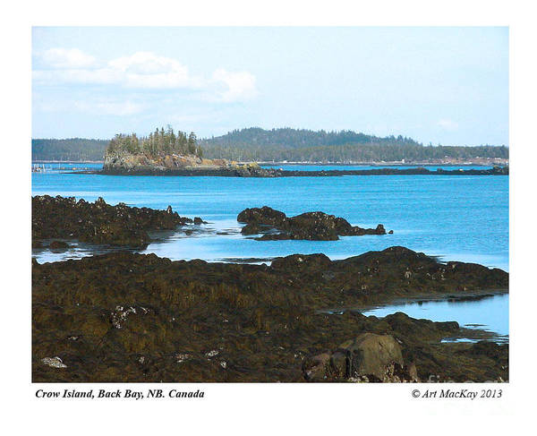 Crow Island Bay Of Fundy Nb Poster