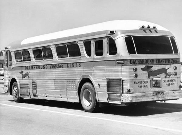 Dachshound Charter Bus Line Poster