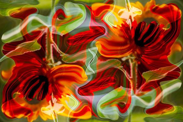 Dancing Flowers Poster