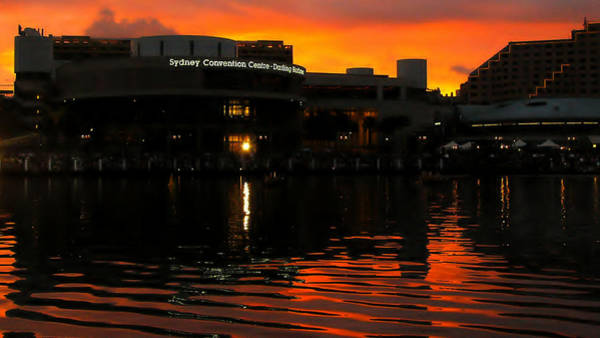 Darling Harbour Evening Poster