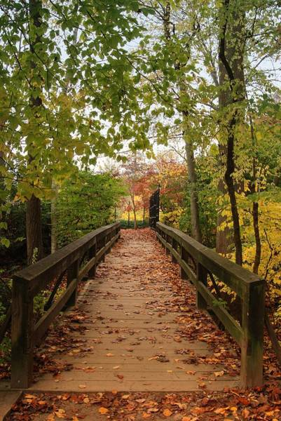 Decorate With Leaves - Holmdel Park Poster