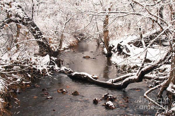 Deep Run In Winter Poster