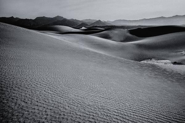 Desert Forms Poster