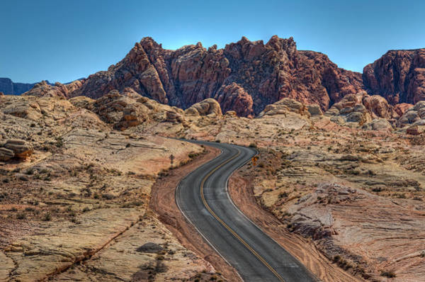 Poster featuring the photograph Desert Road by Darlene Bushue