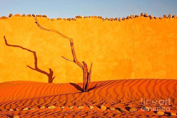 Namibia Desert Still Life Poster