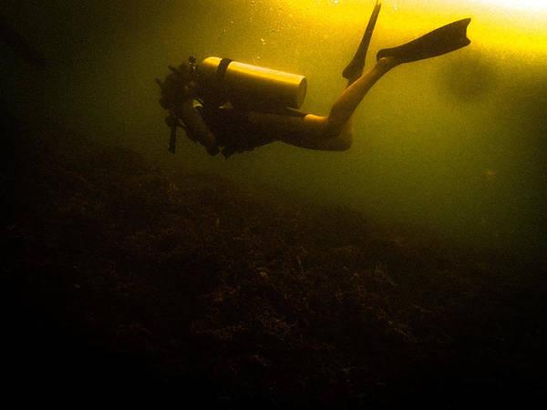 Diving Dark Poster