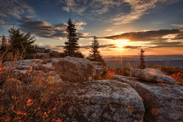 Dolly Sods Morning Poster