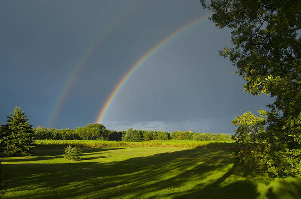 Double Rainbow Over Fields Poster