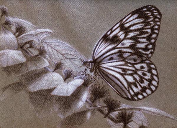 Dreams Sketch Poster