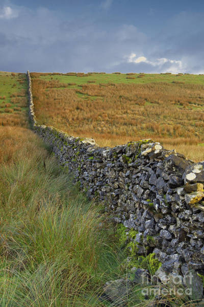 Dry Stone Wall Yorkshire Dales Uk Poster