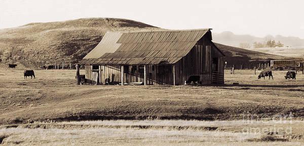 Durham California Barn Poster