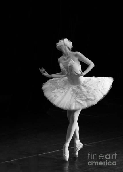 Dying Swan 3. Poster