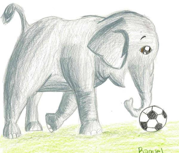 Poster featuring the drawing Elephant Playing Soccer by Raquel Chaupiz