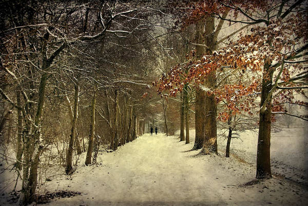 Enchanting Dutch Winter Landscape Poster
