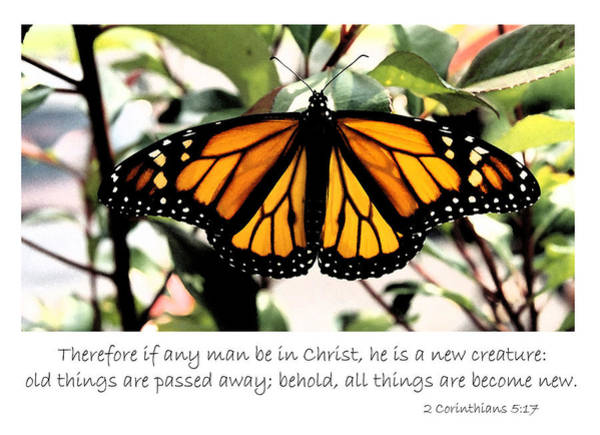 English New Creature In Christ Poster