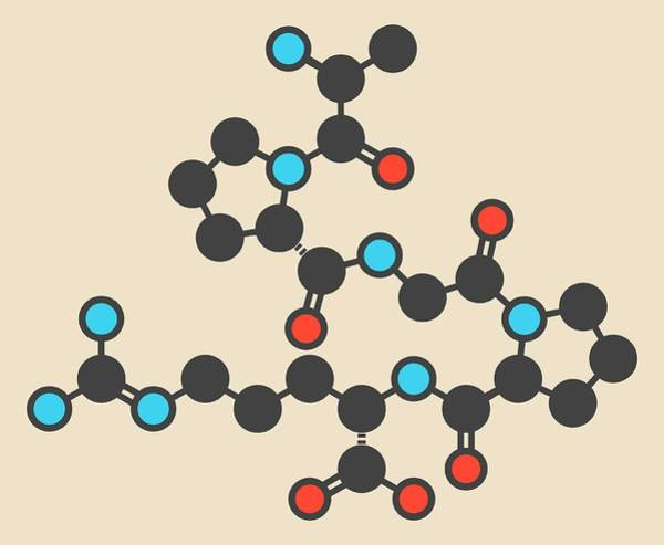 Enterostatin Signaling Peptide Molecule Poster