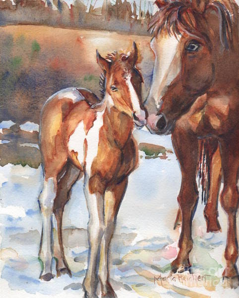 horse painting in watercolor Eskimo Kisses Poster