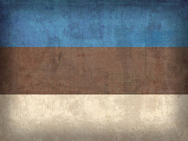 Estonia Flag Vintage Distressed Finish Poster