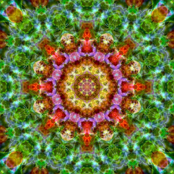 Expression Mandala Poster