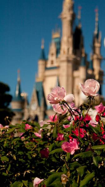 Fairytale Garden Poster