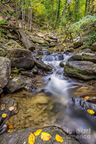 Fall Arrives At Amicalola Falls Poster