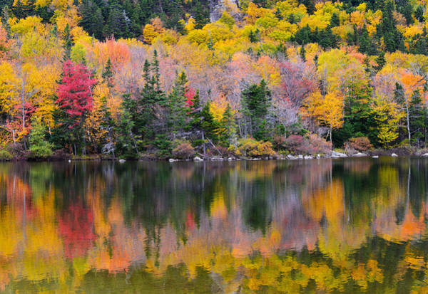 Fall Reflections In Echo Lake Poster