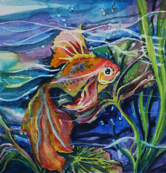 Fanciful Fish Poster