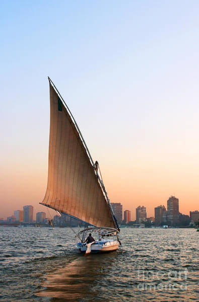 Felucca On The Nile Poster