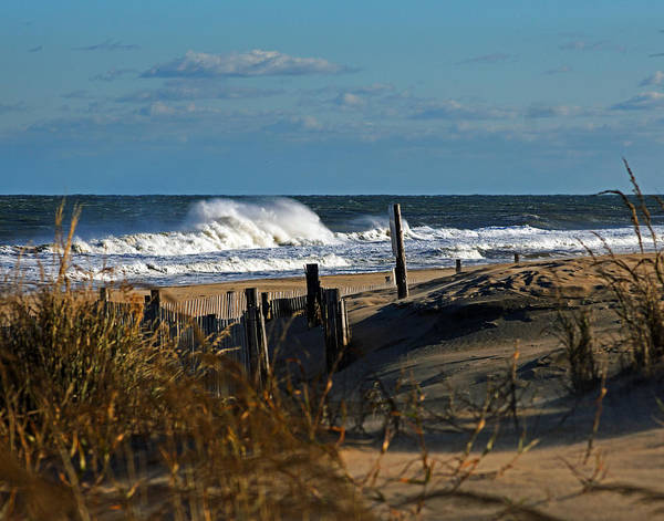 Fenwick Dunes And Waves Poster