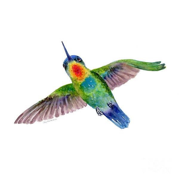 Fiery-throated Hummingbird Poster