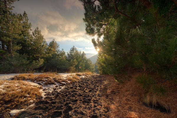 Poster featuring the photograph First Snow On Mount Etna by Mirko Chessari