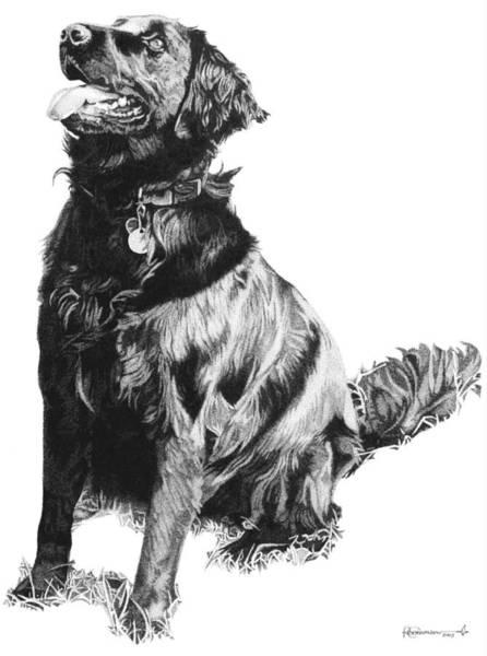 Poster featuring the drawing Flat Coat by Rob Christensen