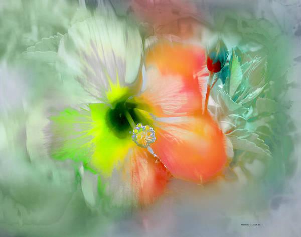 Flor De Ayamonte Poster