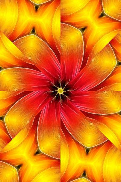 Flower Close-up--fractalius Kaleidoscope Poster
