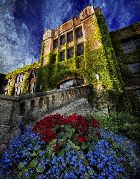 Flowers At Somsen Hall Poster