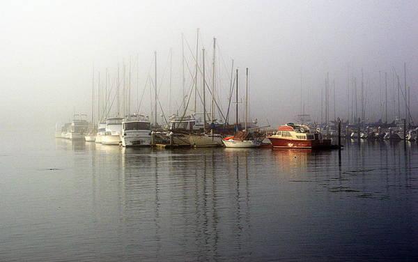 Fog Light In The Harbor Poster