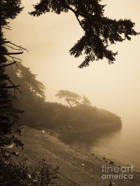 Foggy Beach Poster