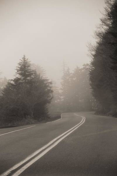 Foggy Morning Drive Poster