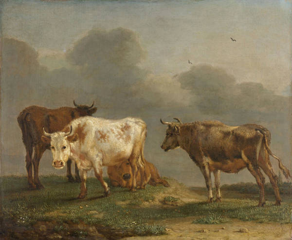 Four Cows In A Meadow Poster