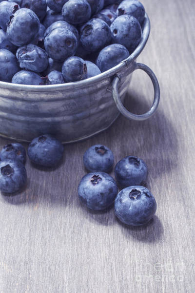 Fresh Picked Blueberries With Vintage Feel Poster