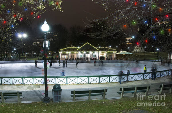 Frog Pond Ice Skating Rink In Boston Commons Poster