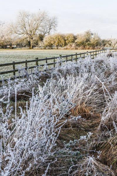 Frosty Landscape Poster