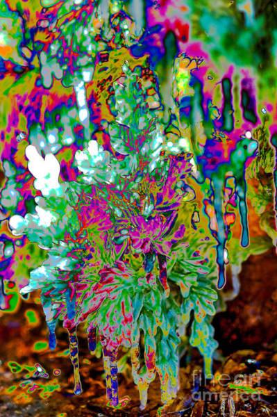 Poster featuring the digital art Frozen Juniper by Mae Wertz