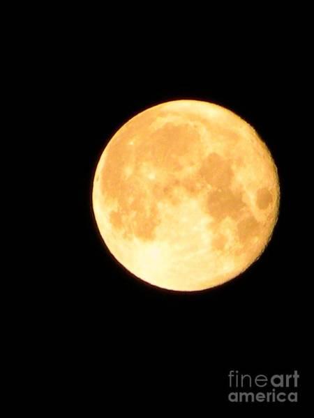 Full Moon Saturday Night Poster