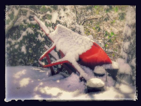 Gardener's Winter Dream Poster