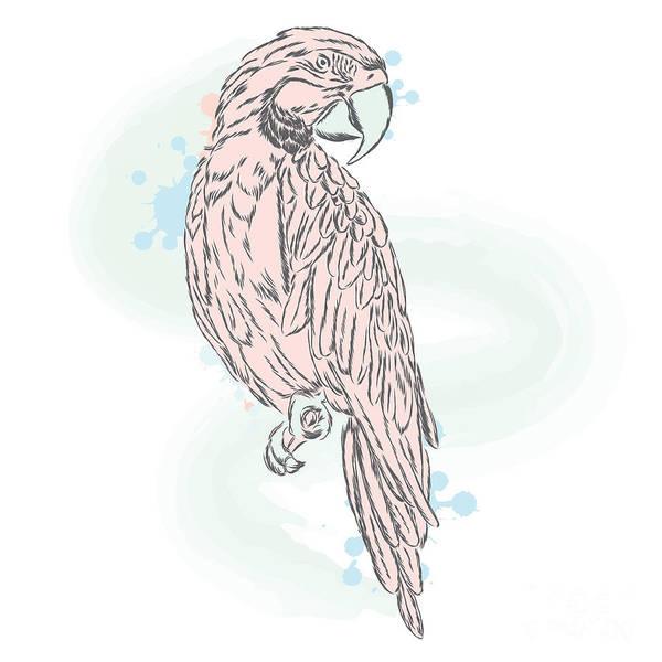 Gentle Parrot Vector. Trendy Shades Poster