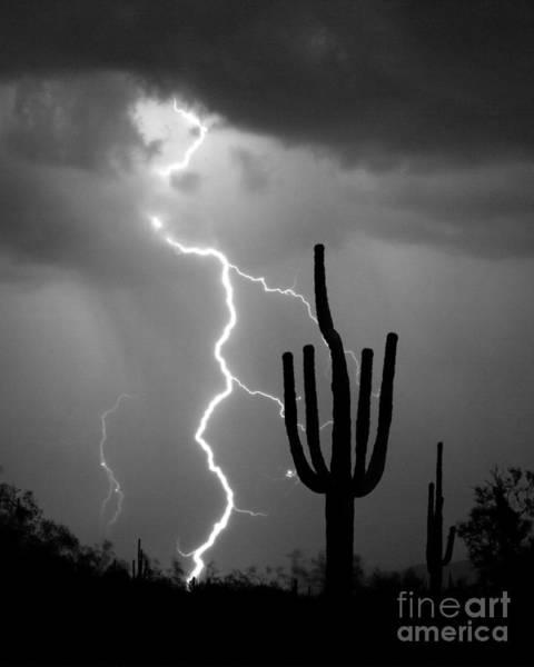 Giant Saguaro Cactus Lightning Strike Bw Poster