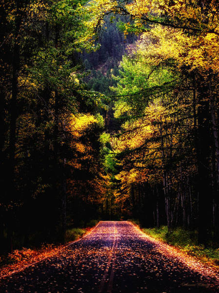 Glacier Fall Road Poster