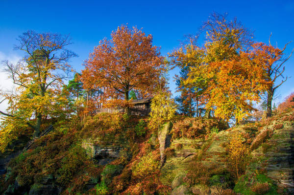 Golden Autumn On Neurathen Castle Poster